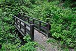 白岩の滝 - panoramio (17).jpg