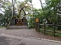 觀霧遊憩區 Guanwu Recreation Area - panoramio (1).jpg