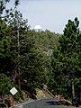 0.84m Telescope Building-Sierra SanPedroMartir-BajaCalifornia-Mexico.jpg