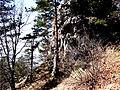 053 05 Harakovce, Slovakia - panoramio (2).jpg