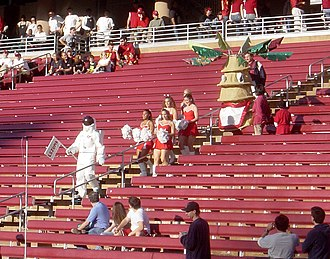 Stanford Tree - The Stanford Tree entering Stanford Stadium in November 2006.