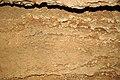 111 Limestone bedding 5 (8316559897).jpg