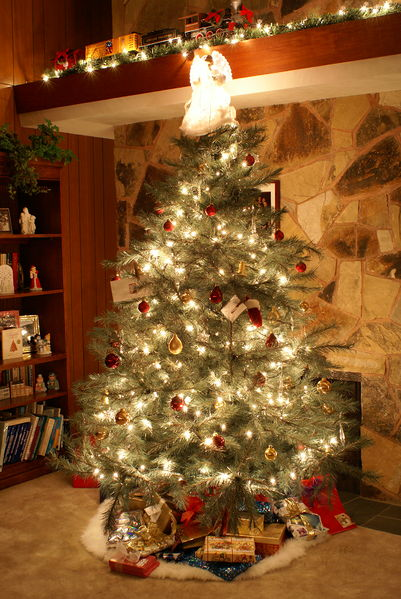 Christmas tree (Wikimedia Commons)