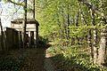 1382viki Cmentarz żydowski przy ul. Lotniczej. Foto Barbara Maliszewska.jpg