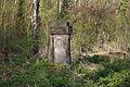 1468viki Cmentarz żydowski przy ul. Lotniczej. Foto Barbara Maliszewska.jpg