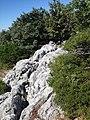 16980 Erenler-Orhaneli-Bursa, Turkey - panoramio (40).jpg