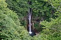 180727 Nasu Heisei-no-mori Forest Nasu Japan12.JPG