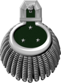1893mmed-e17.png