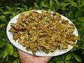 1963Foods cuisine of Bulacan 40.jpg