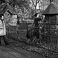 20.11.1961. Animaux au jardin des plantes. (1961) - 53Fi3075.jpg