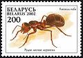 2002. Stamp of Belarus 0456.jpg
