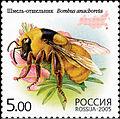 2005. Марка России stamp hi12612325014b2ce1752cdd2.jpg