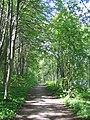 2008, Älvleden Avesta - panoramio (4).jpg