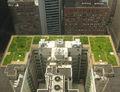 20080708 Chicago City Hall Green Roof edit 2.jpg