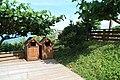2010 07 18940 5989 Chenggong Township, Highway 11, Hotels, Parks, Taiwan, Trash bins.JPG