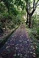 2012-10-26 13-11-02 Pentax JH (49282520012).jpg