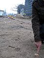 2013 Ausgrabung Alter St. Nikolai-Friedhof Nikolaikapelle Hannover, 70b, Fortführung Baggerarbeiten, Einebnung der Grabungsstelle, Teil einer ebenerdigen Schädeldecke.jpg