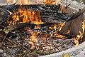 2014.07.05.174324 Campfire Rheinsheim.jpg