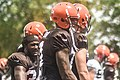 2016 Cleveland Browns Training Camp (28660283106).jpg
