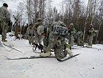 2016 US Army Alaska Winter Games 160127-A-CP861-499.jpg