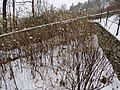 2018-02-09 (252) Frankenfels - Südböhmen.jpg