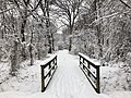 2018-03-21 12 58 59 View along a snow-covered walking path as it crosses a bridge in the Franklin Farm section of Oak Hill, Fairfax County, Virginia.jpg