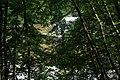26.7.16 Purkarec to Hluboka nad Vltavou 56 (28572922125).jpg