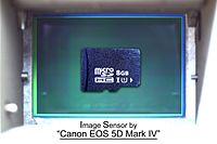 35mm FullSize-Sensor and MicroSD Card.jpg