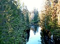 3729. Toksovo. Dam on the Okhta River.jpg