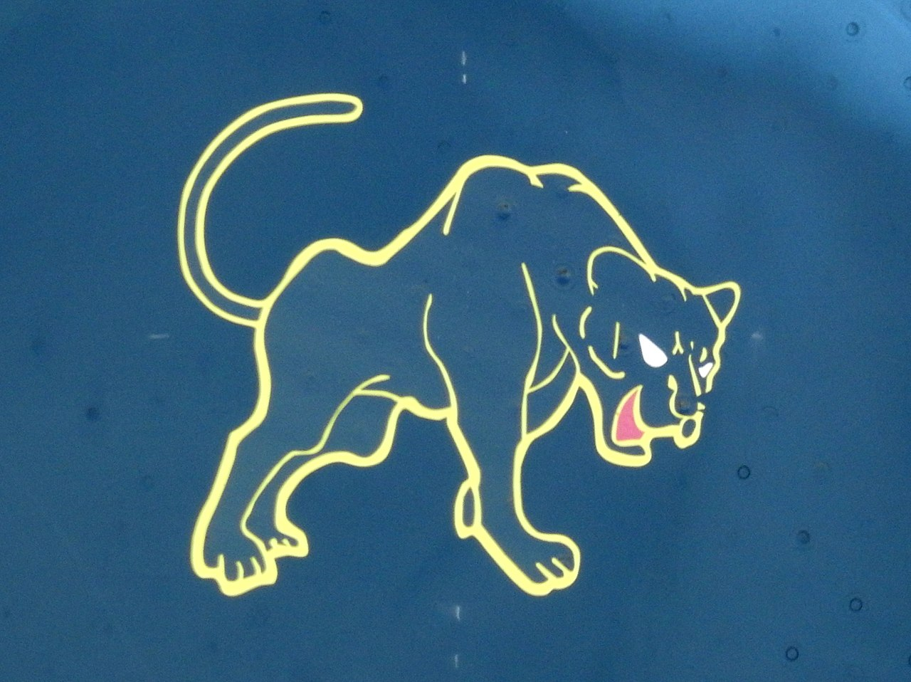 File8th Tactical Fighter Squadron Tail Marking