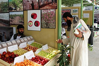 Economy of Afghanistan - A fruit vendor at the Kabul International AgFair in 2009.