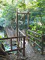 A little bridge, Costa Rica.jpg