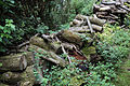 A log pile Clavering Essex England 1.jpg