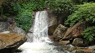 Nelliampathi - Image: A mountain stream
