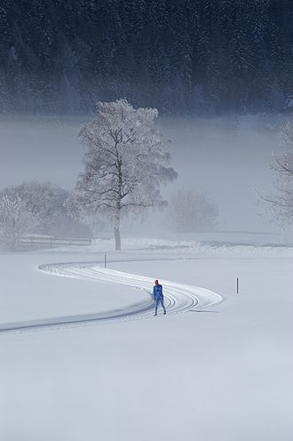 Cross-country skiing trail - Recreational cross-country trail in Tyrol, groomed for classic skiing only.