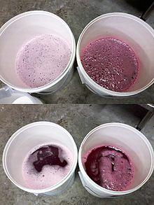 61ecf55b6de Acidification d un vin rouge à l acide tartrique. Gauche   vin témoin.  Droite   vin acidifié.