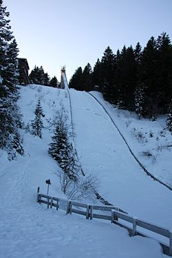 Adlerschanzen (K84), januar 2009