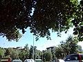 Aerodrom, Skopje 1000, Macedonia (FYROM) - panoramio (34).jpg