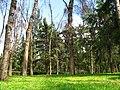 Alameda Norte - panoramio.jpg