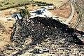 Ali Khamenei in Hoveyzeh Martyrs' Cemetery (6).jpg