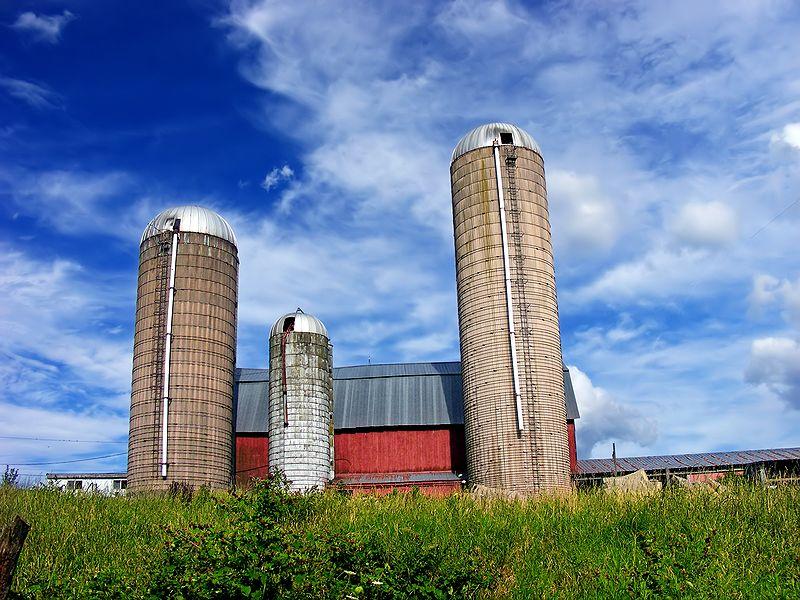 Allegany Township silos