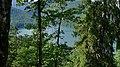 Alpsee vom Oberen Winterzugweg 03.jpg