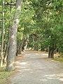 Amanohashidate - panoramio (1).jpg