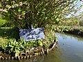 Amiens canotage dans les hortillonnages (5).JPG