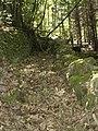 Ancien chemin de Ginestet.jpg