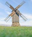 Angla Reinu talu pukktuulik august 2014.jpg