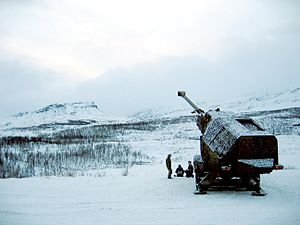 Archer Artillery System - Another view of the deployed ARCHER