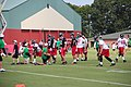 Atlanta Falcons training camp Aug 2015 IMG 2822.jpg