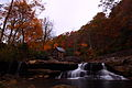 Autumn-gristmill-foliage-below-waterfalls - West Virginia - ForestWander.jpg