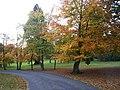 Autumn in Eden Villa Park, Bachelors Park, Portadown - geograph.org.uk - 601432.jpg